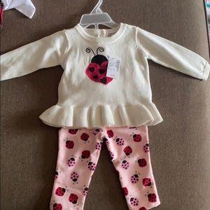 Lady bug Sweater and pants set